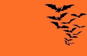 Oferta de halloween